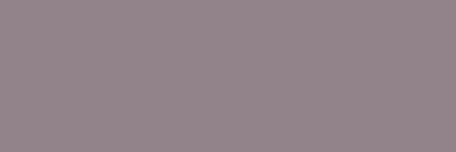 3248 AMETIST