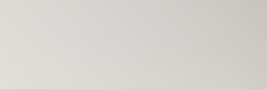 3099 DIRTY WHITE