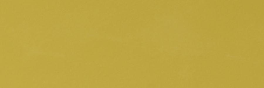 3192 OLIVE