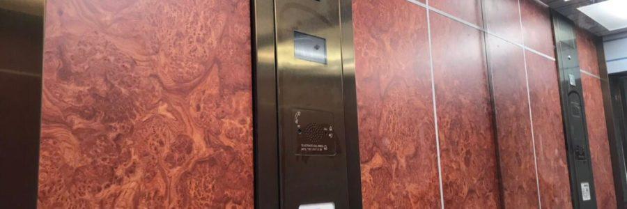 Оздоблення ліфтових кабін, «The Garden»